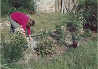 Woman gardening with duck