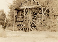 Water wheel in irrigated country