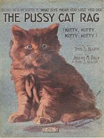 The Pussy Cat Rag
