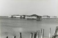 Camps on the lakefront