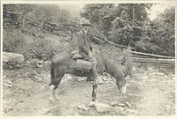 Unidentified man on a horse