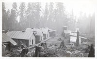 A model lumber camp in the state of Washington