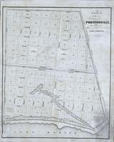 Plan of the village of Proctorville at the first terminus of the Mexican Gulf Rail Road. Lake Borgne. Fishbourne's Lithog., New Orleans.